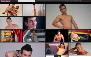 Lsawards Gay Cam Website